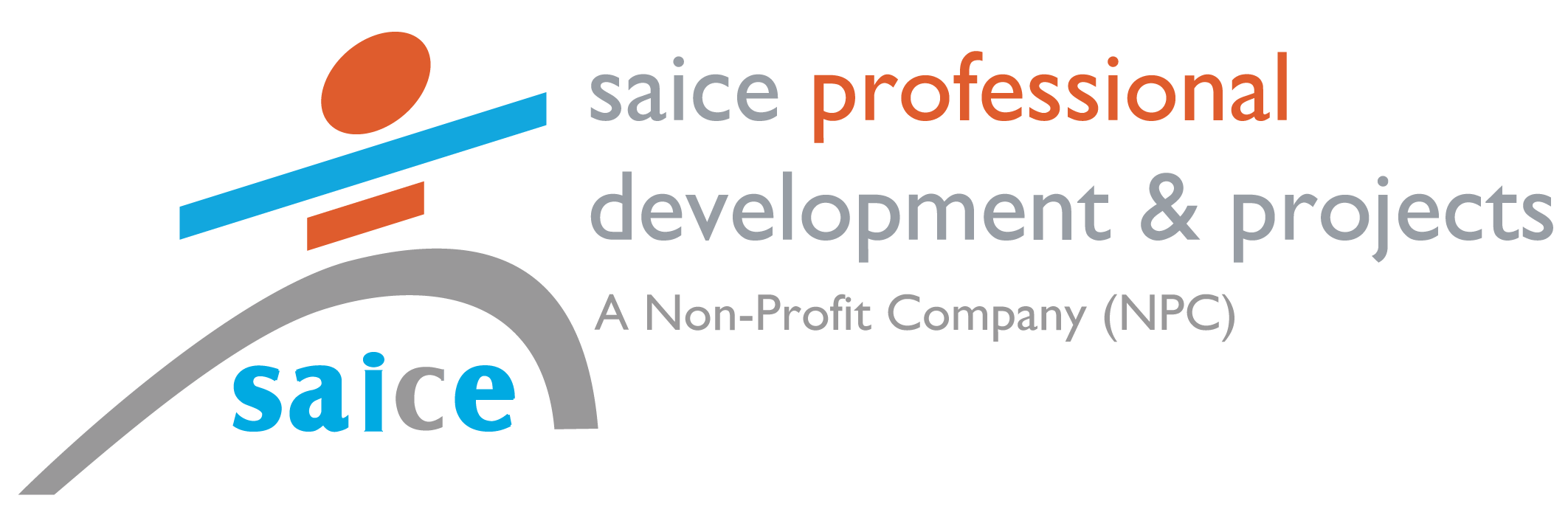 SAICE Professional Developments and Projects
